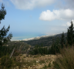Land for sale in Fatka, Keserwan, Lebanon,real estate lebanon, real estate fatka, land in fatka, buildings fatka, apartment fatka, property fatka, properties fatka, fatka property, real estate fatka lebanon, properties fatka keserwan,duplex fatka, luxury apartment fatka, house in fatka, commercial property fatka, industrial proeprty fatka
