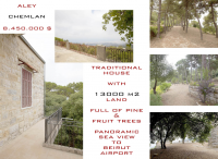 Traditional house with 13000m2 land for sale in Chemlan, Aley, Lebanon