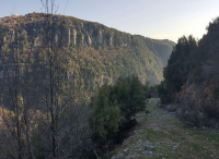 Land for sale in Faitroun Keserwan Lebanon, buy sell properties in lebanon faitroun keserwan, real estate in lebanon keserwan faitroun